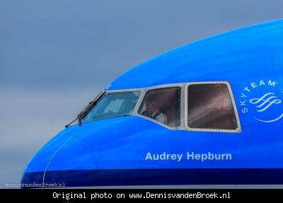 Piloot in Audrey Hepburn MD-11